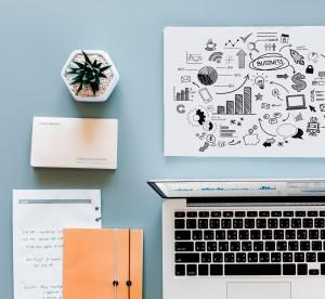 Magpie Acc Blog - Business Plan vs Business Model